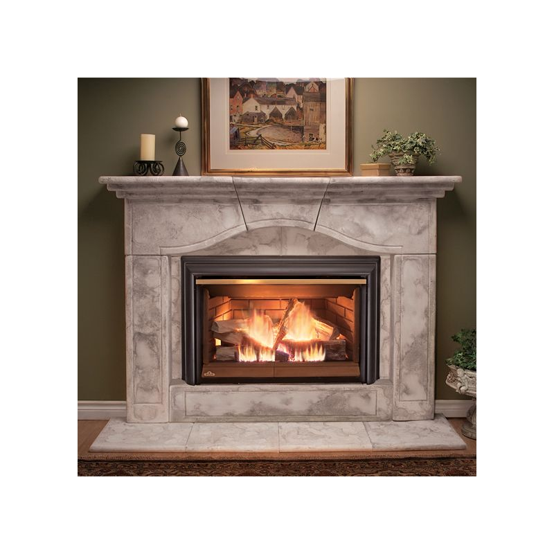 Napoleon Gdi 44n Natural Gas Inspiration 40 000 Btu Direct Vent Natural Gas Fireplace Insert